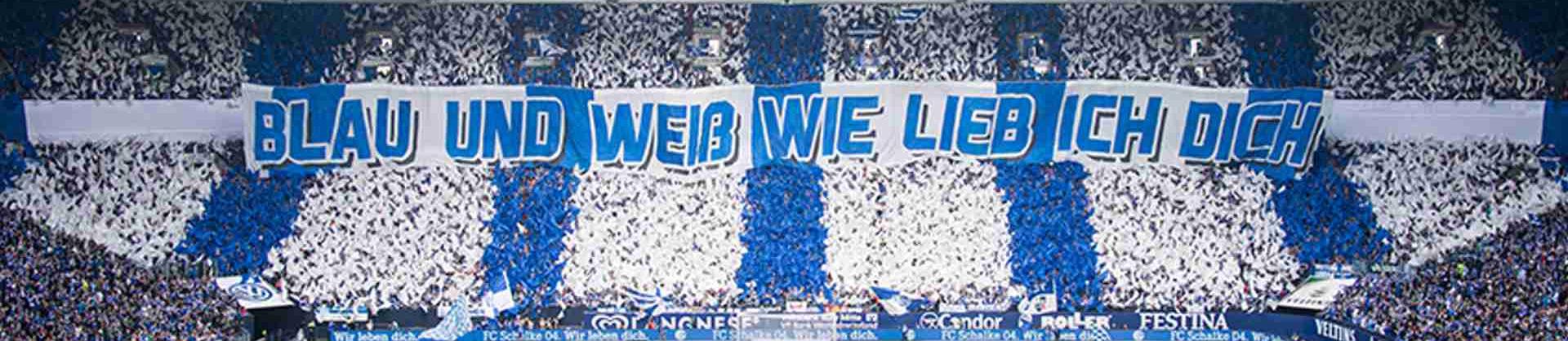 Fanfreundschaft zwischen Schalke 04 und dem 1. FC Nürnberg